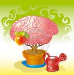 Cerveau-S